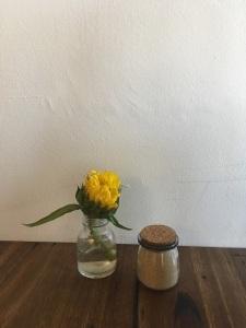 Sunflower TR